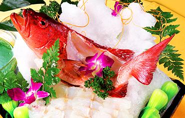 菜品拍摄,食品拍摄,广告摄影,产品摄影,广州金田摄影