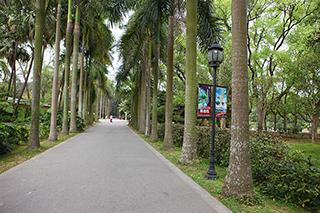 华南植物园,外景摄影